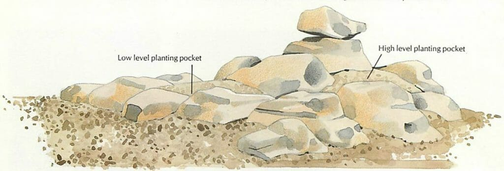 include planting pockets in the rockery