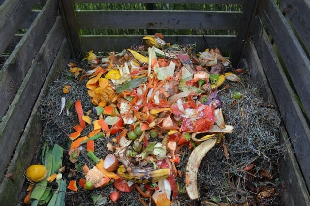 Citrus peels, which obviously includes orange peels and all citrus fruits are good for your compost pile.