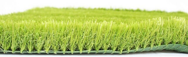 alternatives to grass are a good way to cut back on lawn care expenses