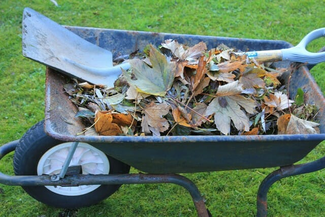 Adding crushed egg shells to your compost is great for your garden.